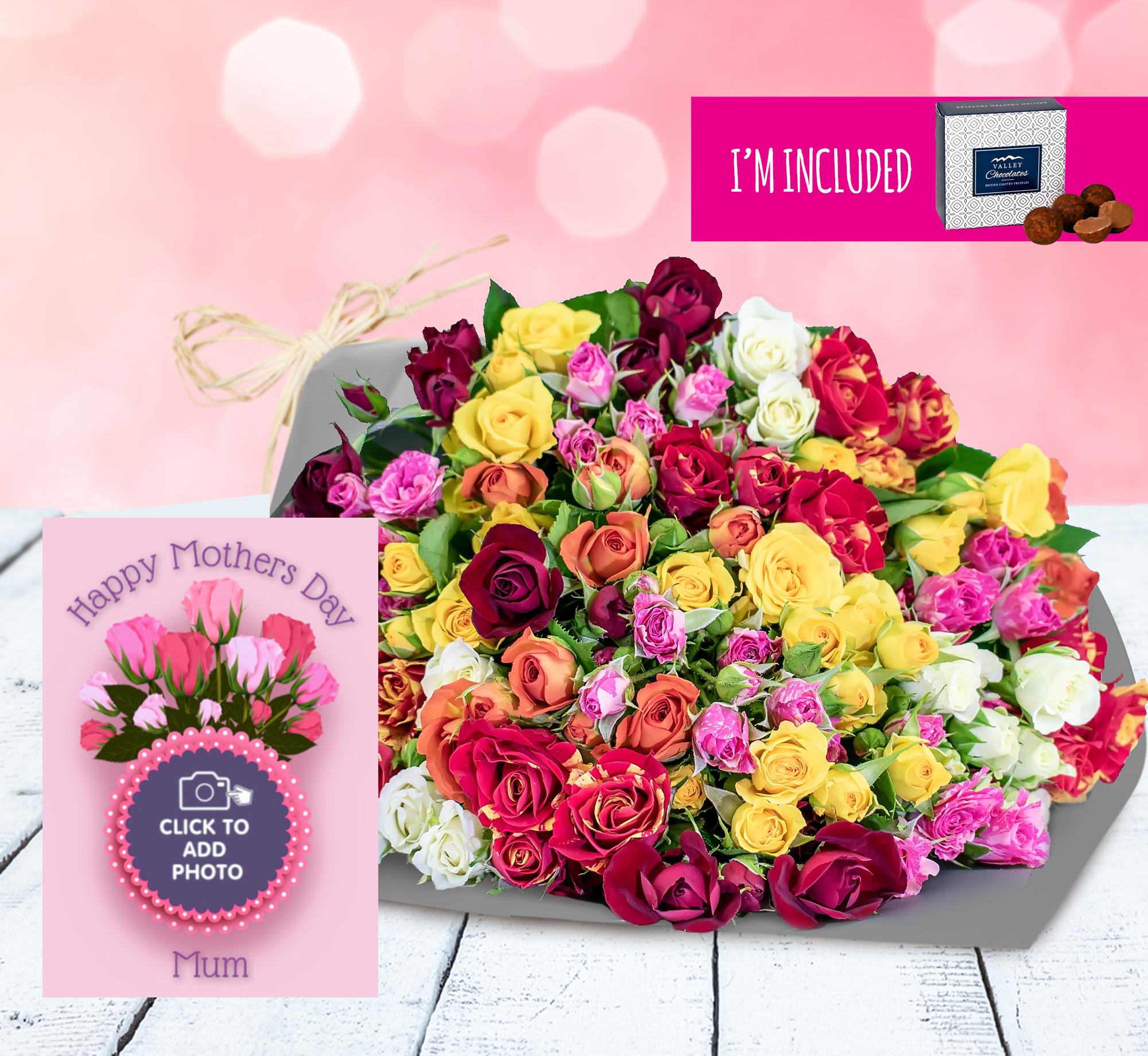 Superb Roses Card Bundle